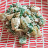 Assiette au motif rouge et blanc contenant du poulet cuisiné avec de la blette et des champignons
